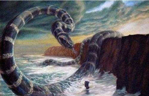 所以气候巨变可能是导致它们灭绝的最主要因素.