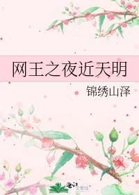 《网王之夜近天明》_言情小说_都市言情小说_免费言情