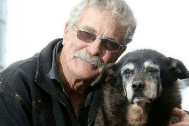 还有一只名叫贝拉的杂交猎犬,它被大卫·理查森在一个皇家防止虐待