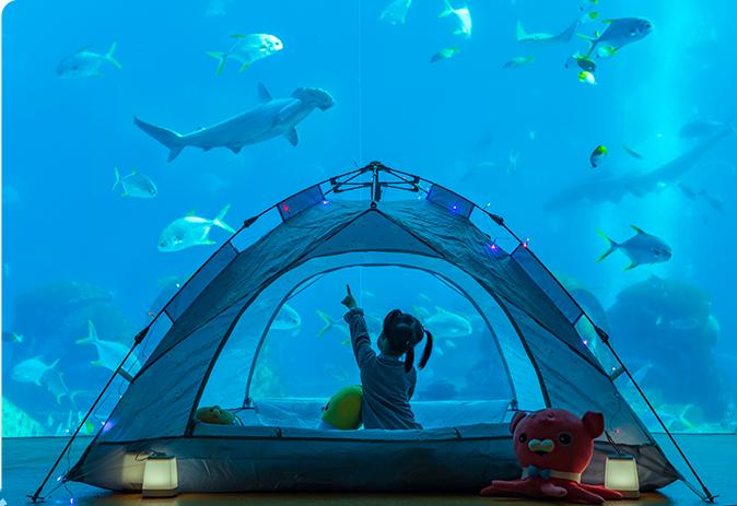 相约海岛丨宝妈最爱的热门亲子酒店为你整理好了快带上孩子出发吧